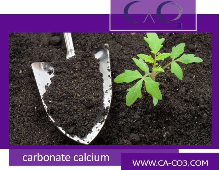 مزایای اضافه کردن کربنات کلسیم در  خاک باغ